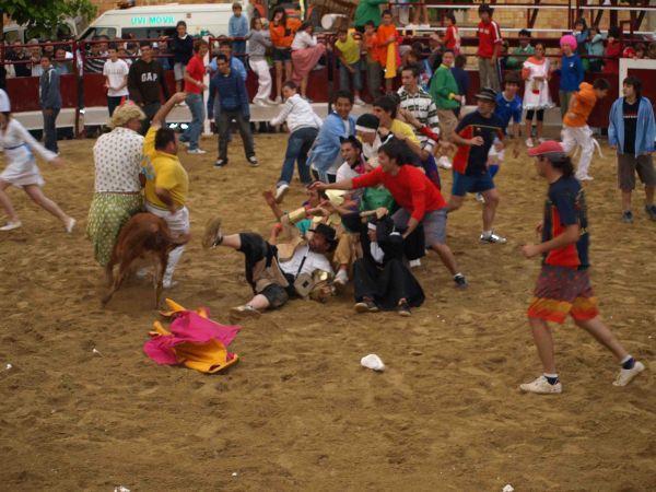 concurso de fotografia fiestas 2008 , creada por jose carlos el 27/04/2009