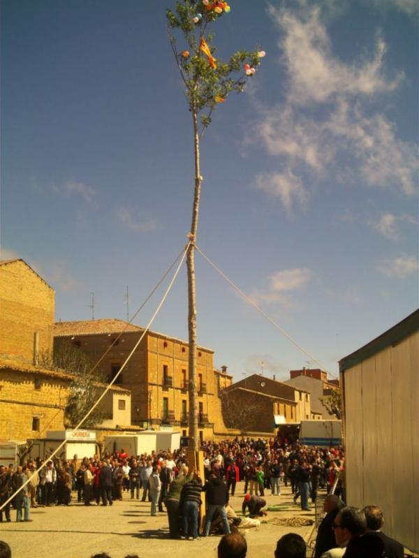 Fiestas de Mayo 2009 , creada por FERNANDISCO el 19/05/2009