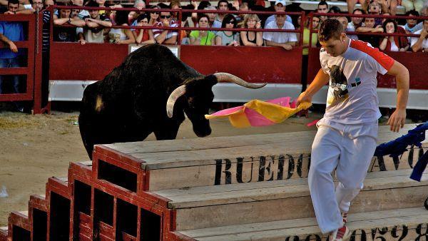 Foto de concurso de fotografia de anibal , creada por Raúl el 22/09/2009